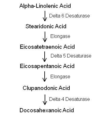 alcohol vitamine b1