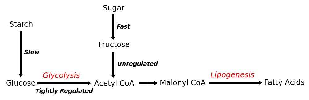 synthesise glucose The calvin cycle by: lydia pearson and heather robinson phase 1: carbon fixation 3 carbon dioxide (1c) is added to 3 ribulose- 1,5-biphosphate or rubp (5c) to form 3.