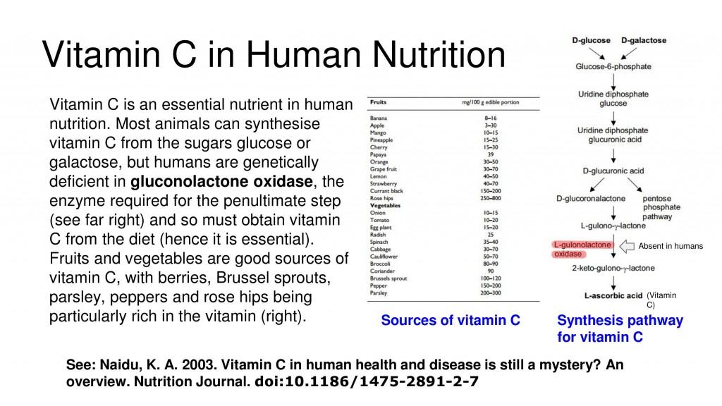 13 Manfaat Vitamin C Bagi Kesehatan Tubuh dan Sumbernya