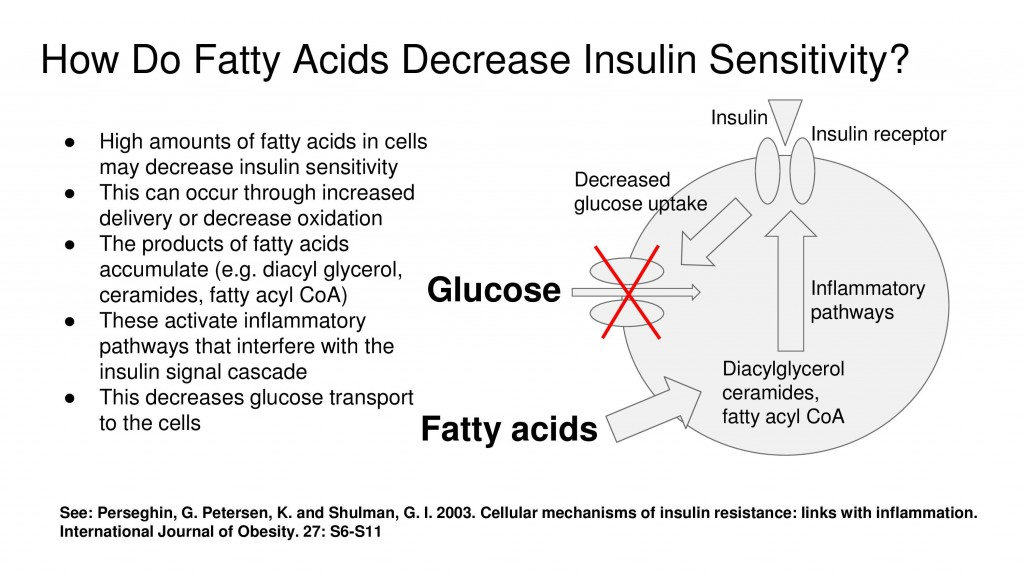 fatty acids insulin sensitivity