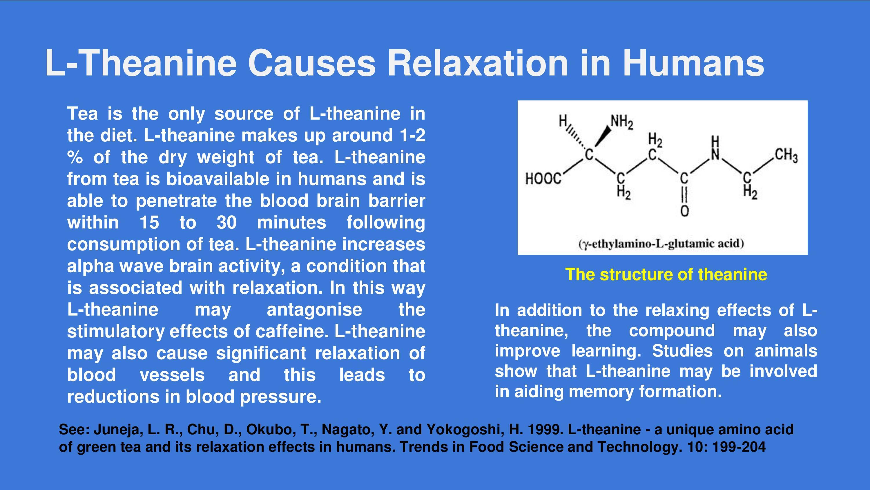 l theanine effekt