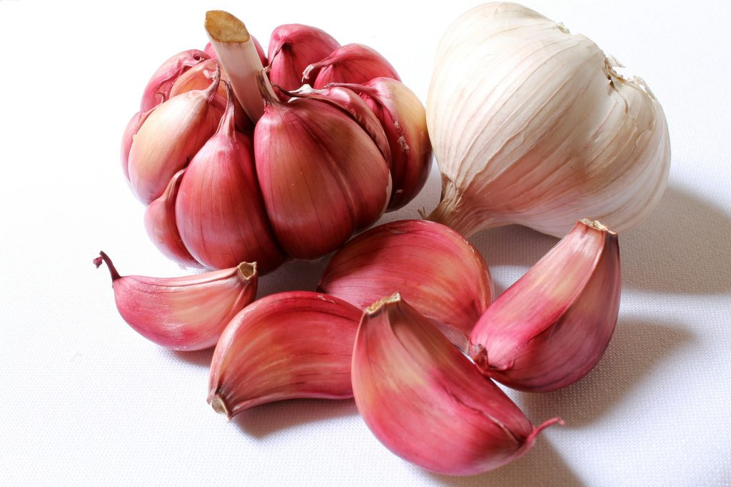 garlic cancer