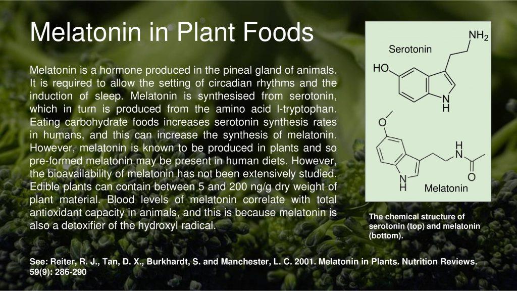 melatonin in plants