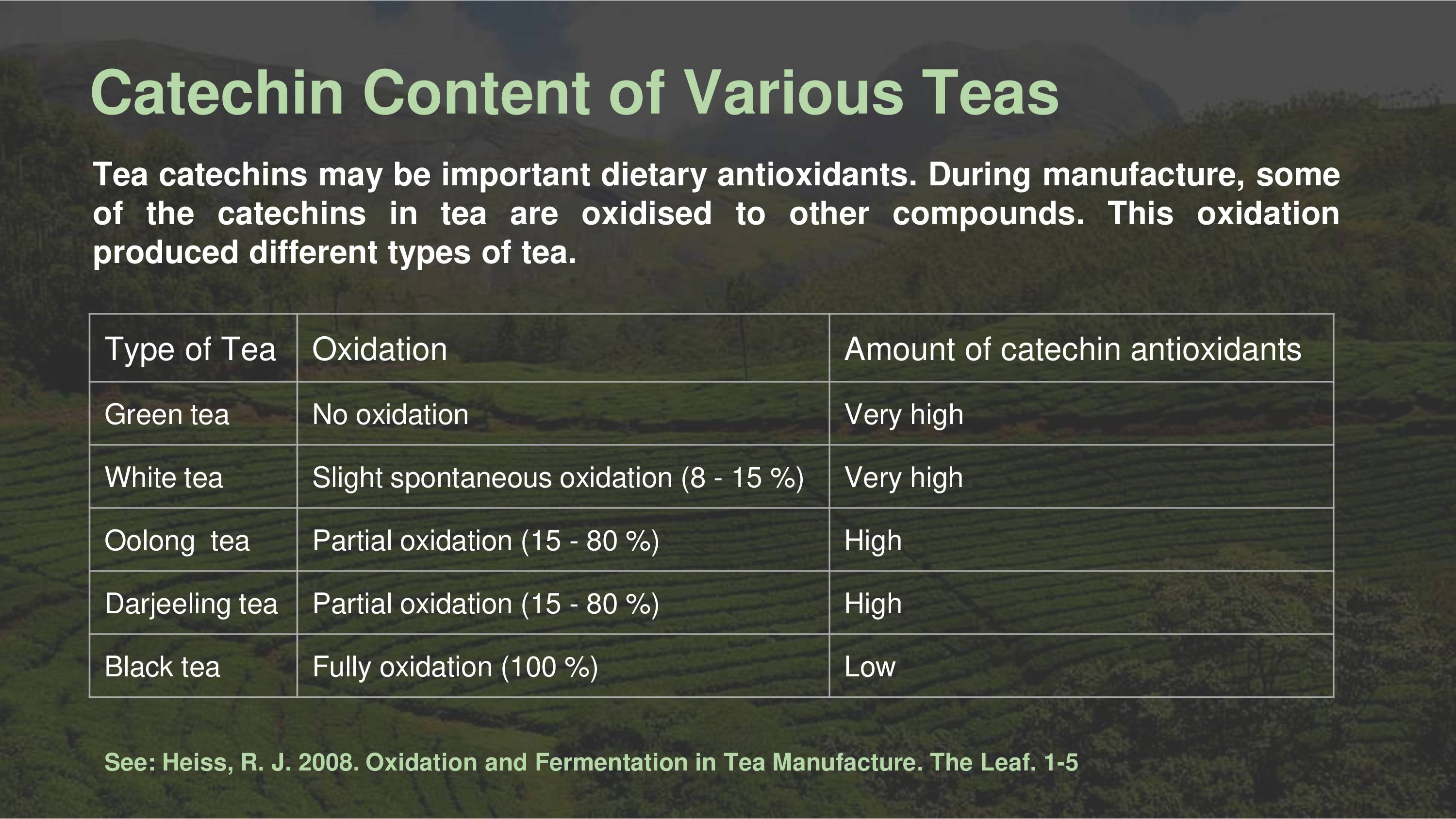 catechins
