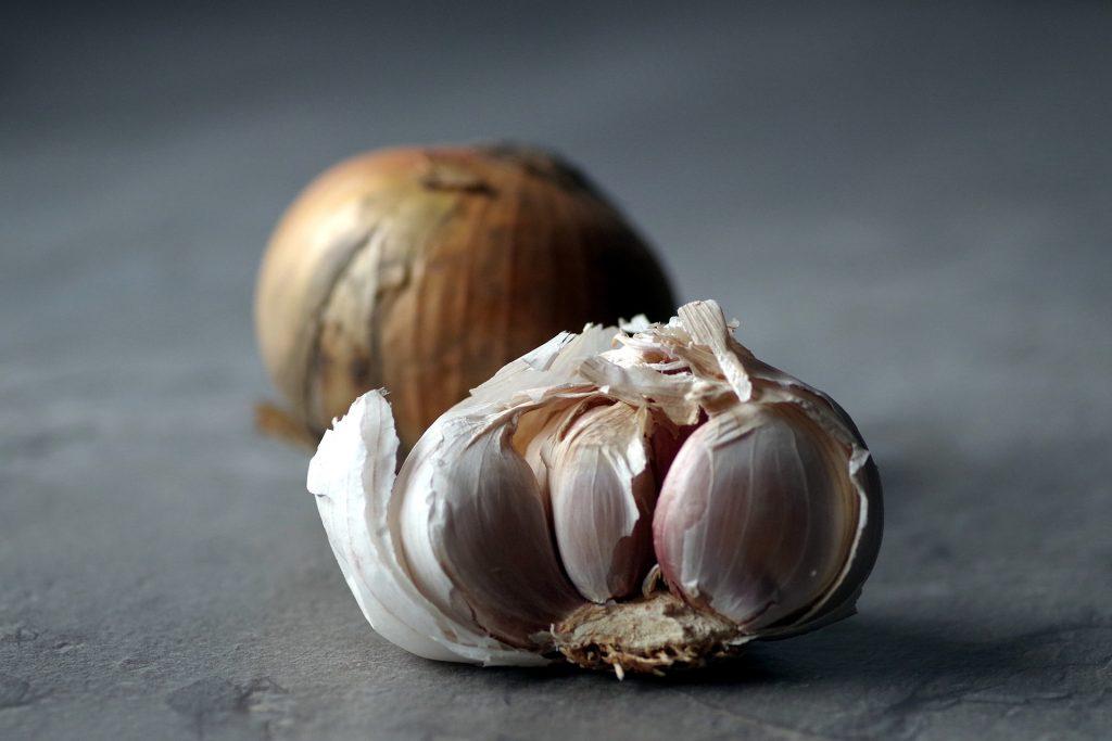 garlic antibiotics