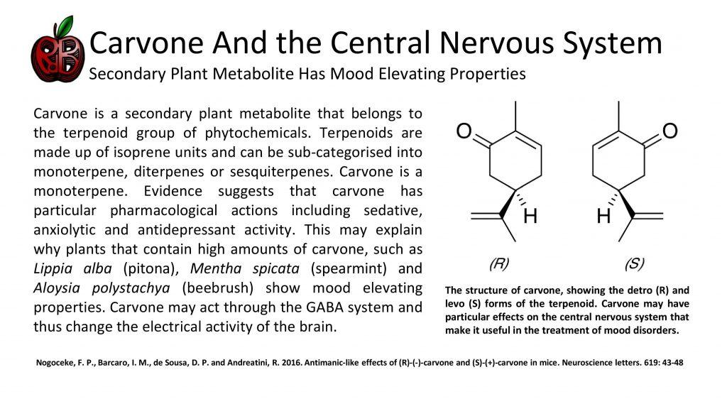 carvone anxiety depression