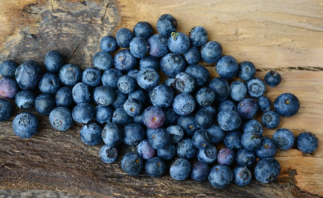 blueberries anxiety depression